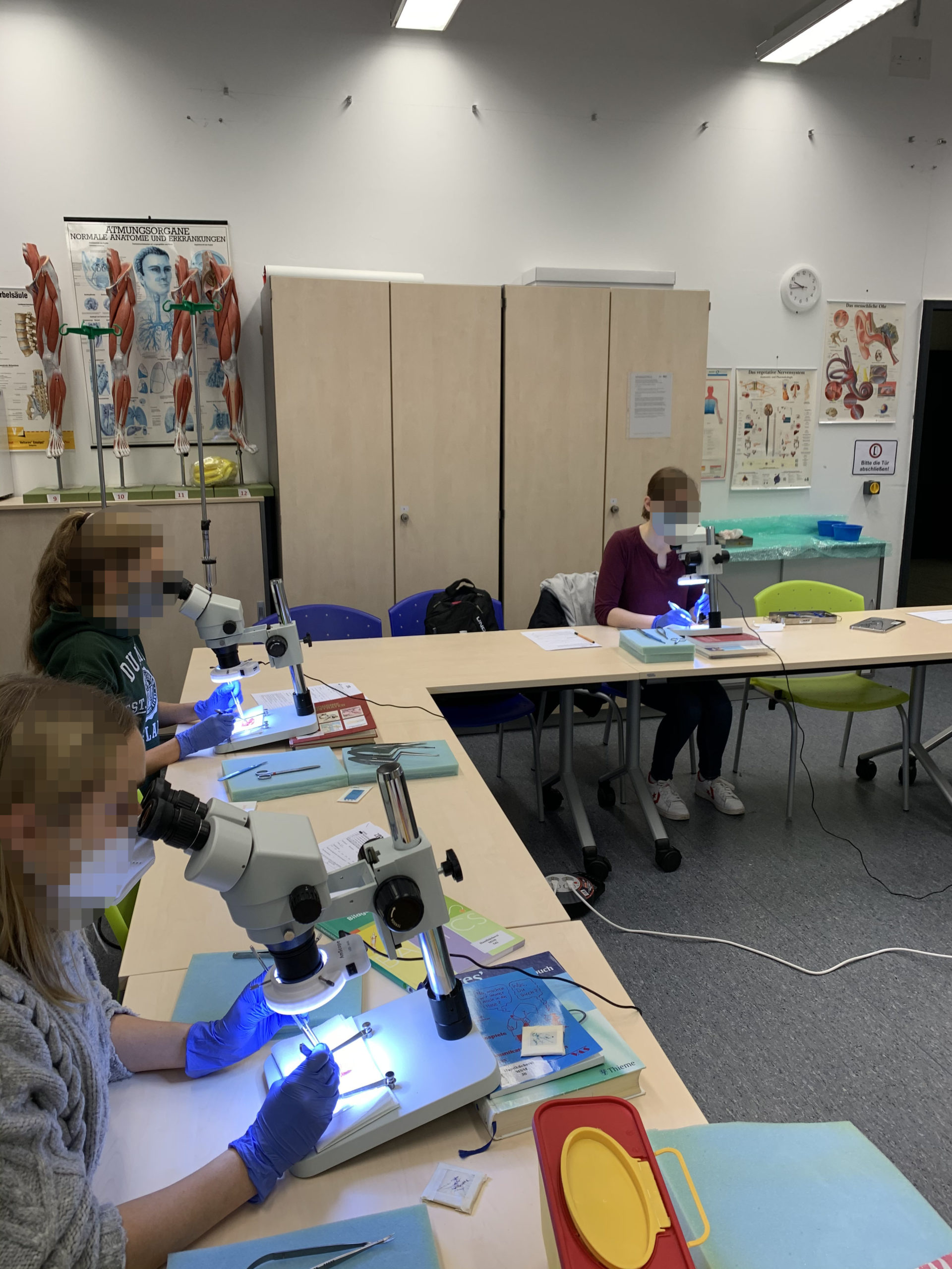 Wahlpflichtfach: Mikrochirurgie 18